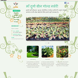 Maa Durga Green Nursery